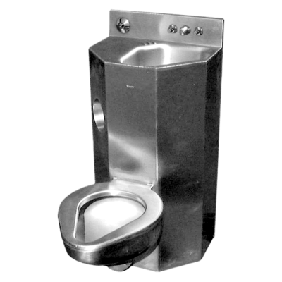 """18"""" Wide Combination Lavatory/Toilet Units with angled lavatory bowl"""